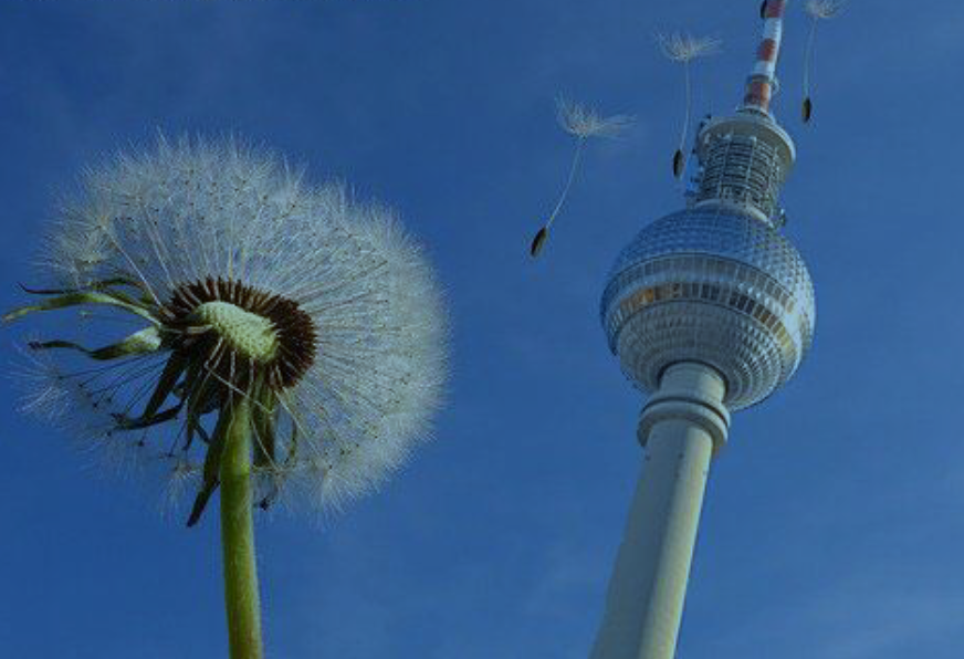 Lernweg Berlin