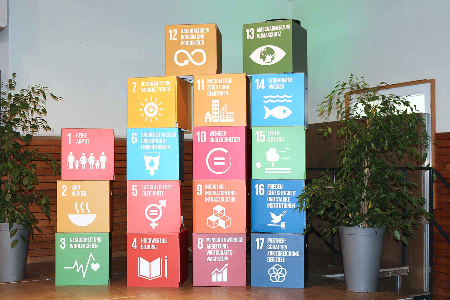 SDG Würfel